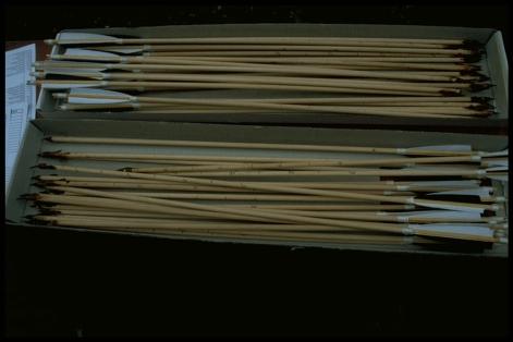 Experimentele mesolithische pijlen