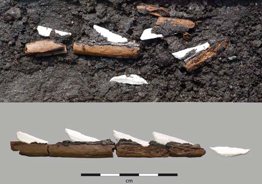 Pijl van Ringsjön (Larson L. & Sjöström A. 2010, figuur 6)