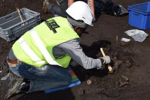 skelet tijdens het opgraven